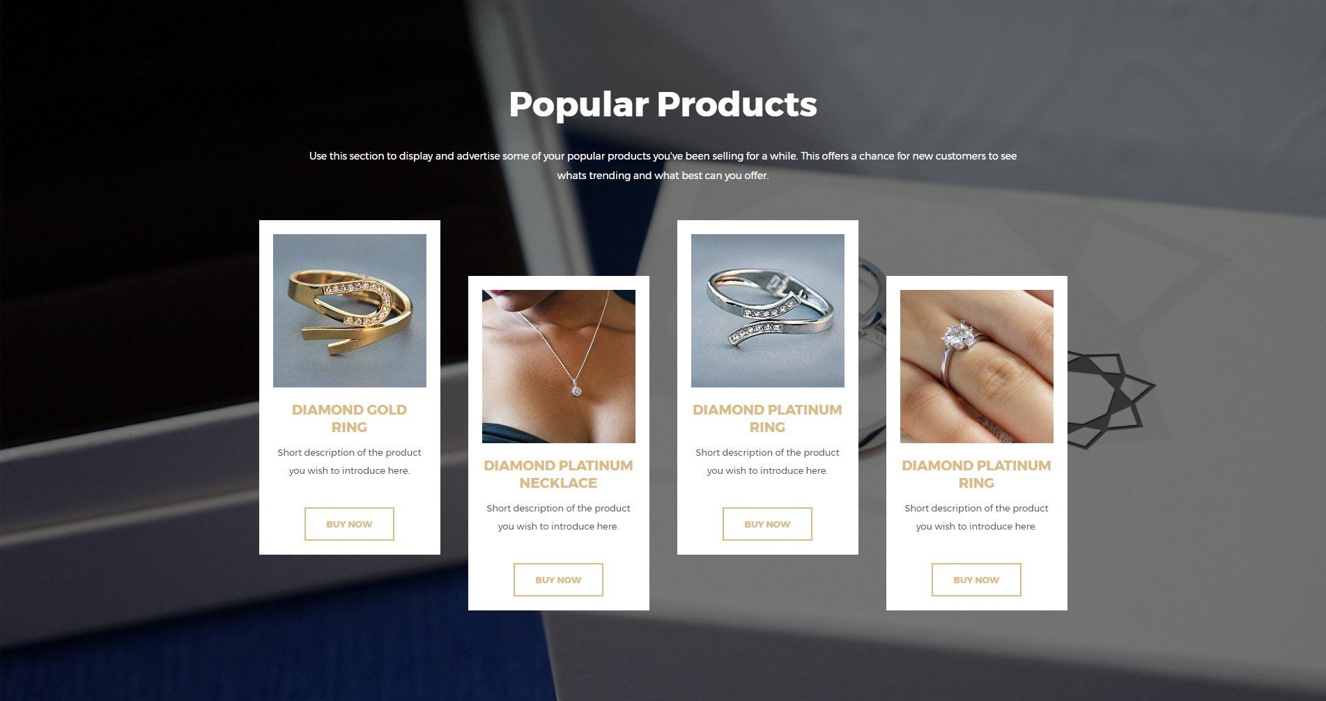A Trendy Page Template for an Online Jewelry Store – Ultimate ...